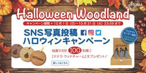 halloween_woodland_300