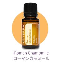 Roman_Chmomile02