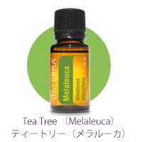 Melaleuca_02