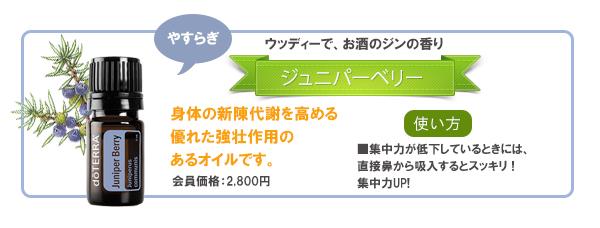 Juniper_berry_ban01